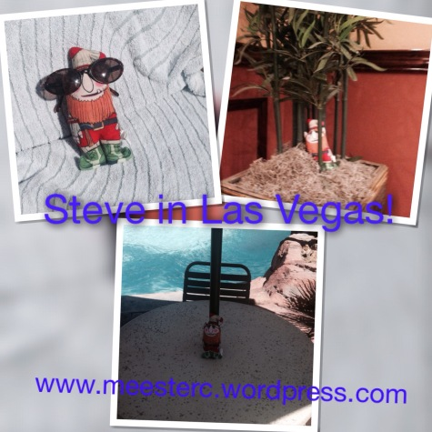 Steve collage
